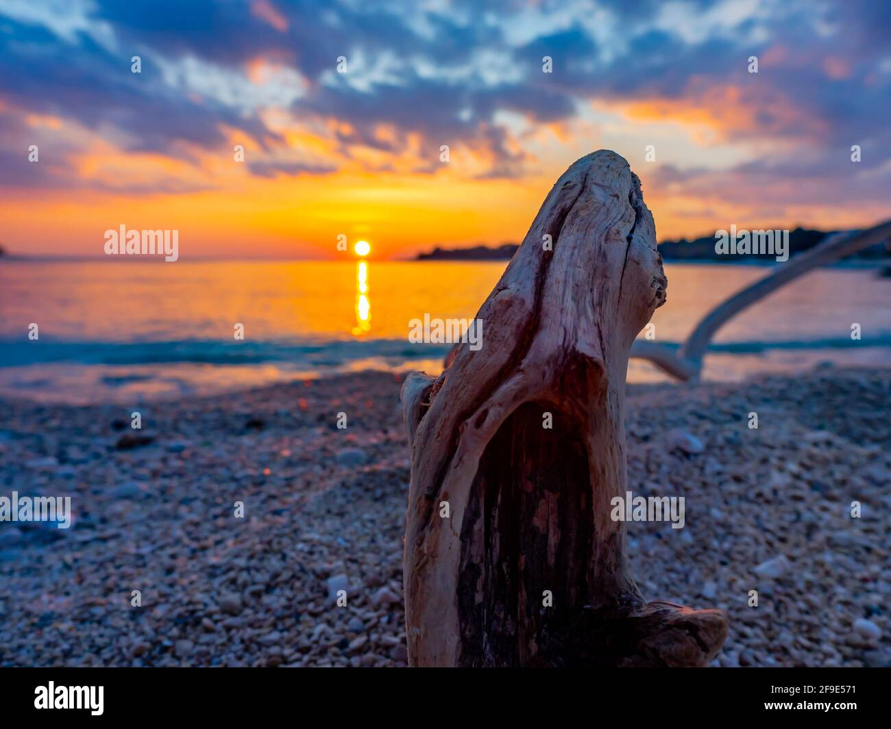 Sunset setting sun seaside beach evening tranquility focus focused on wooden wood erected erection erect alluvion dried tree trunk branch Stock Photo