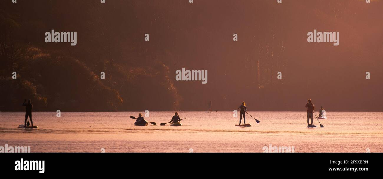 A panoramic image of people paddling Panoramic; on the Gannel River in kayaks and on paddleboards in Newquay in Cornwall. Stock Photo