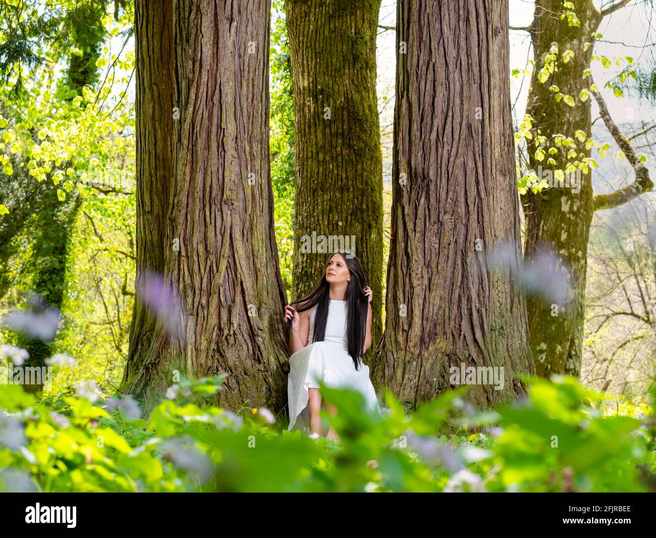 Young woman in nature sitting seated low between amongst big trees facing front frontal view serious looking away dreamy daydreaming Stock Photo