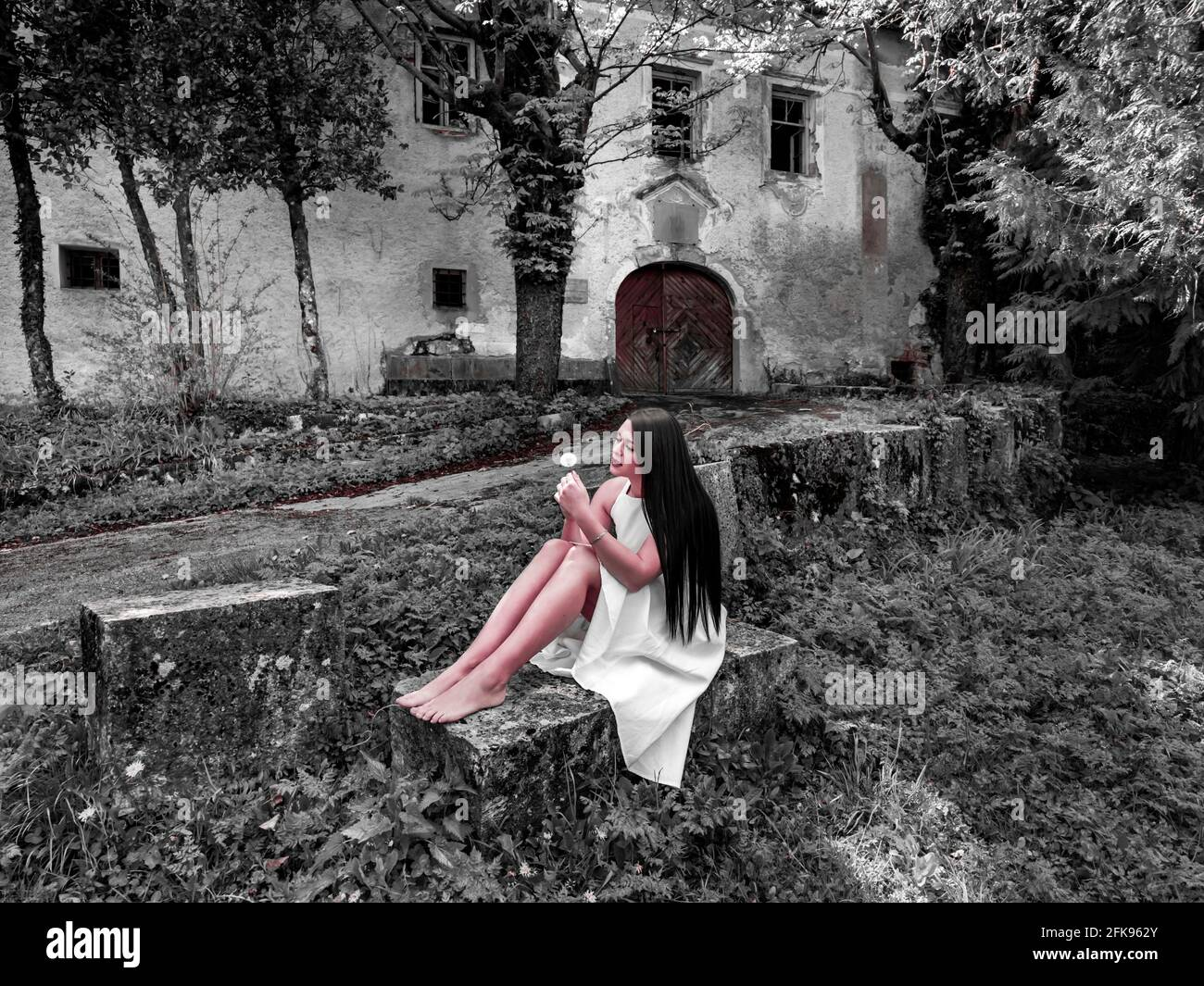 Young woman sitting barefeet with dandelion flower in hand semi mix mixed monochrome Red Redish tint creative artistic arty altered image Stock Photo