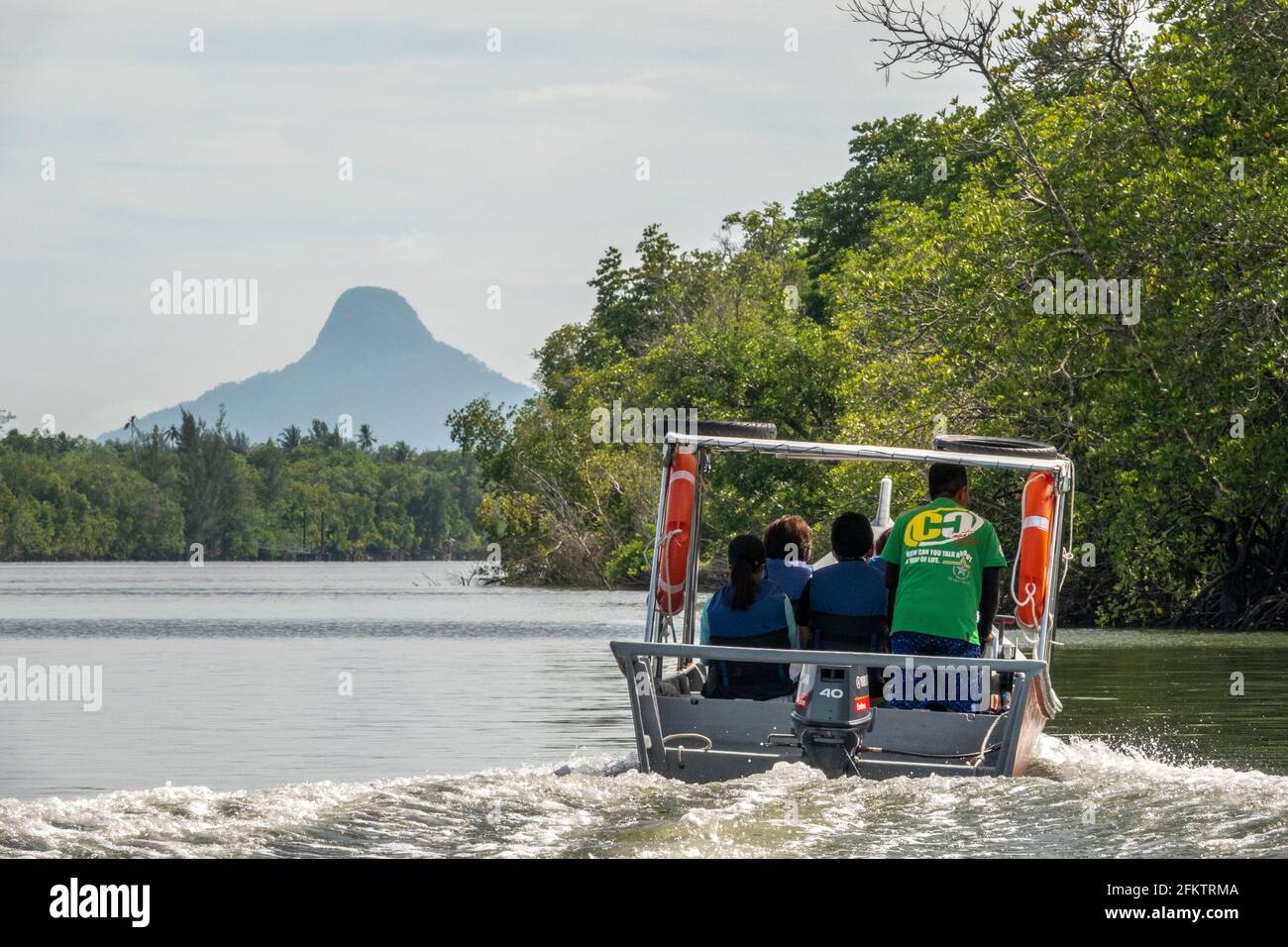 Cruising along Sibu Laut-Telaga Air river bank, Matang, Sarawak, Malaysia Stock Photo