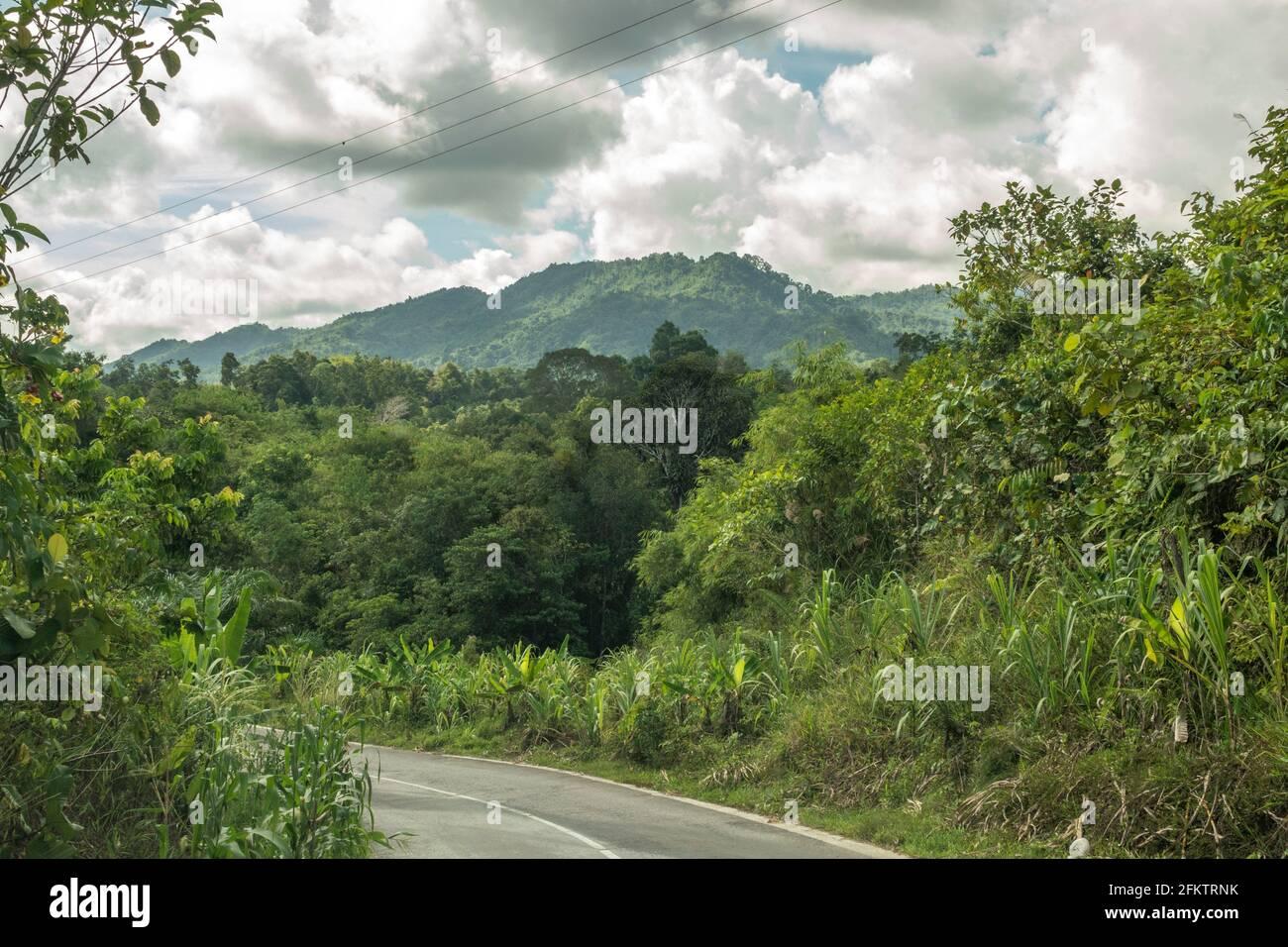 Kampung Semaru road, Padawan, Sarawak, East Malaysia Stock Photo