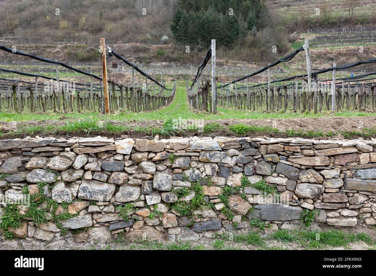 Dry Stone Wall In Der Wachau Lower Austria Stock Photo