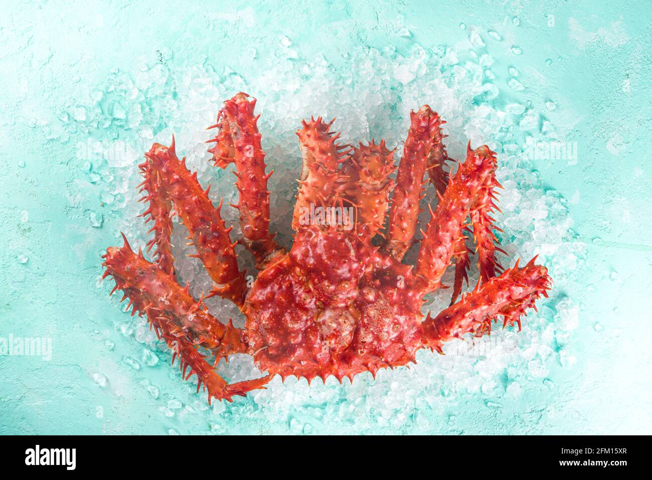 Set of various fresh raw seafood - octopus, crab, squid, shrimp prawn, oyster, mussels, salmon tuna dorada fish with spices of herbs lemon, light blue Stock Photo