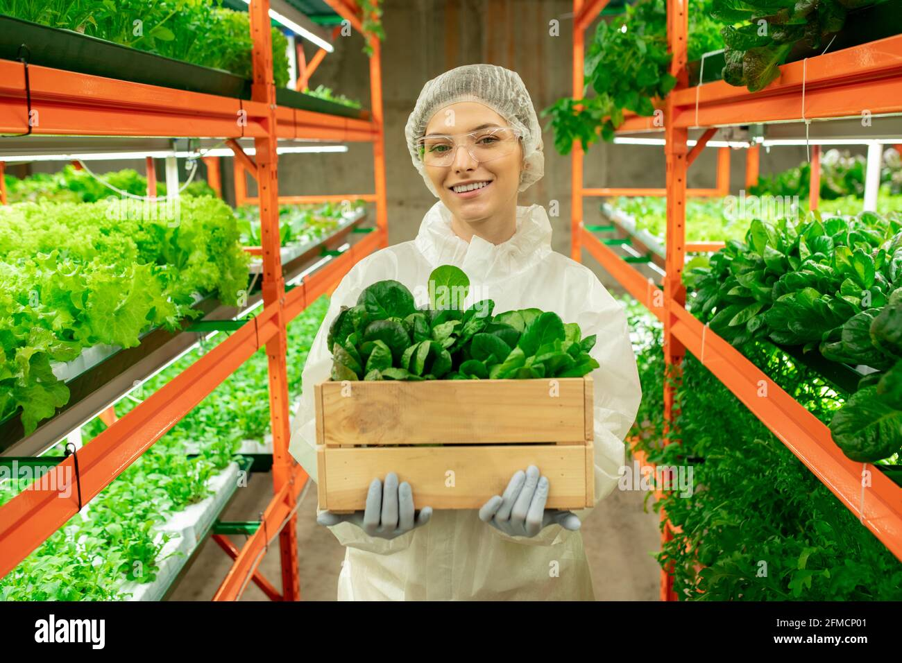 Portrait of cheerful young greenhouse employee in protective workwear and goggles holding box of seedlings in aisle of vertical farm Stock Photo