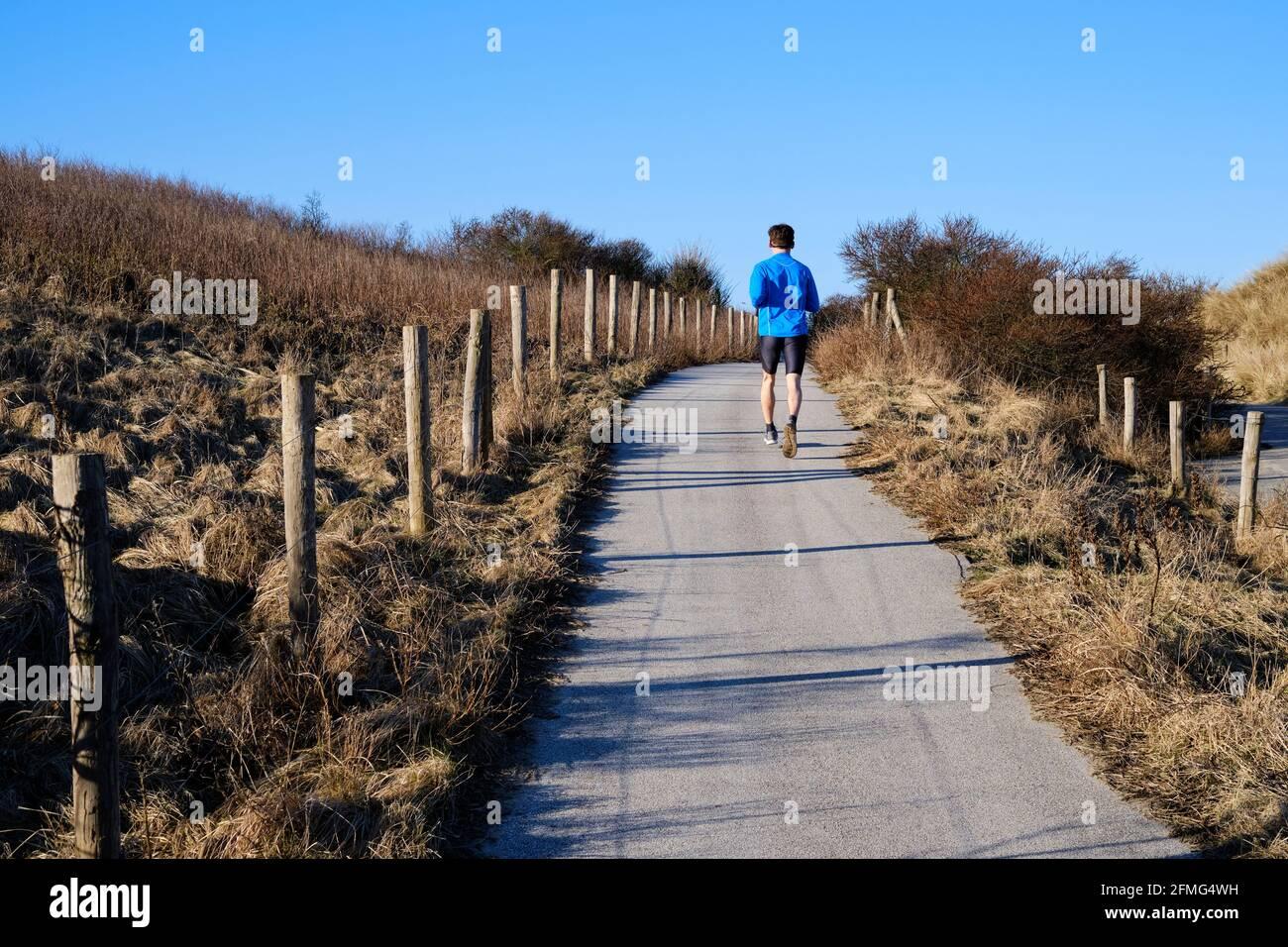Harlopen door de Haagse duinen. | Running through the dunes of The Hague. Stock Photo