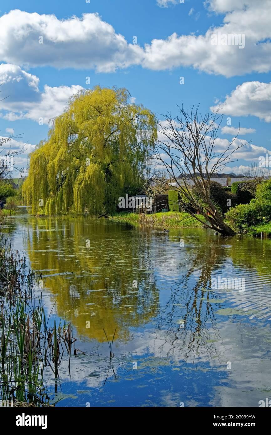 UK,South Yorkshire,Barnsley,Elsecar Canal Stock Photo