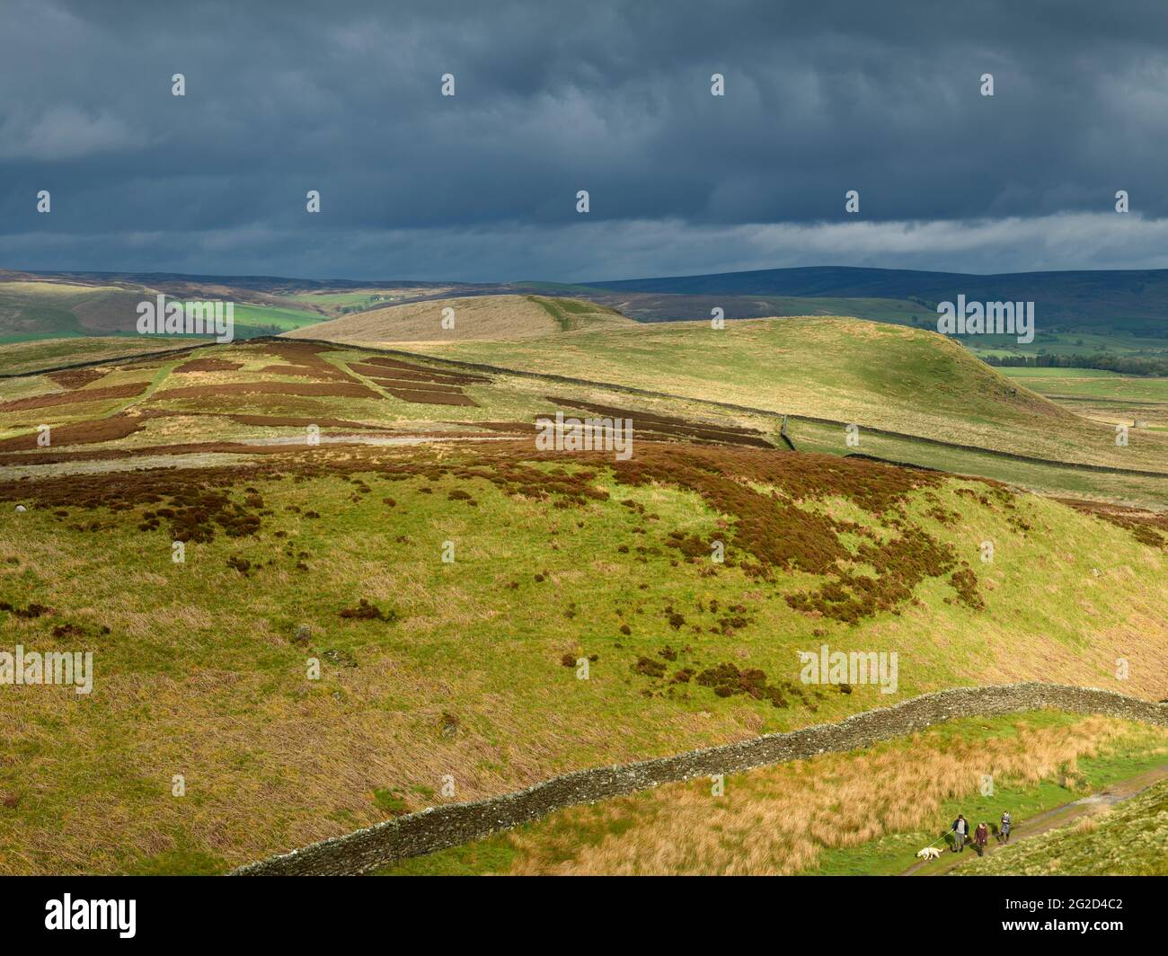 Scenic rural landscape & dark rain clouds (hilly area, rolling sunlit hills, people walking pet dog) - view to Wharfedale, Yorkshire Dales England, UK Stock Photo