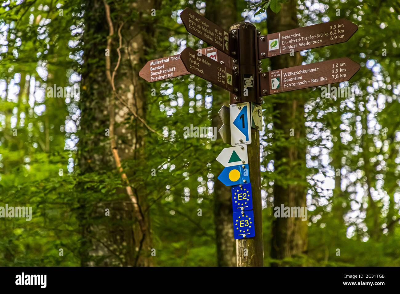 Marked hiking trails in Luxembourg. Small sign forest in the Müllerthal. The Müllerthal Trail is made up of three loops. They are connected to each other and can also be walked separately. To keep track, a hiking app is also helpful Stock Photo