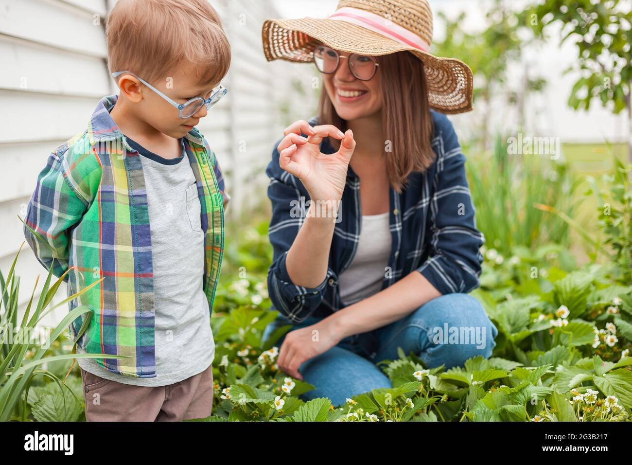 Child and mother gardening in strawberry plant garden in backyard Stock Photo