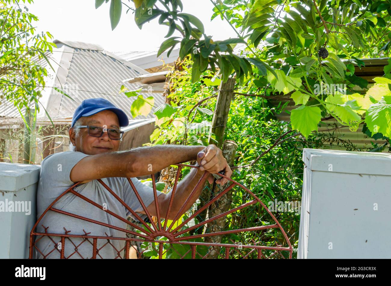 Jamaican Senior Man Looking Out From Behind His Gate Stock Photo