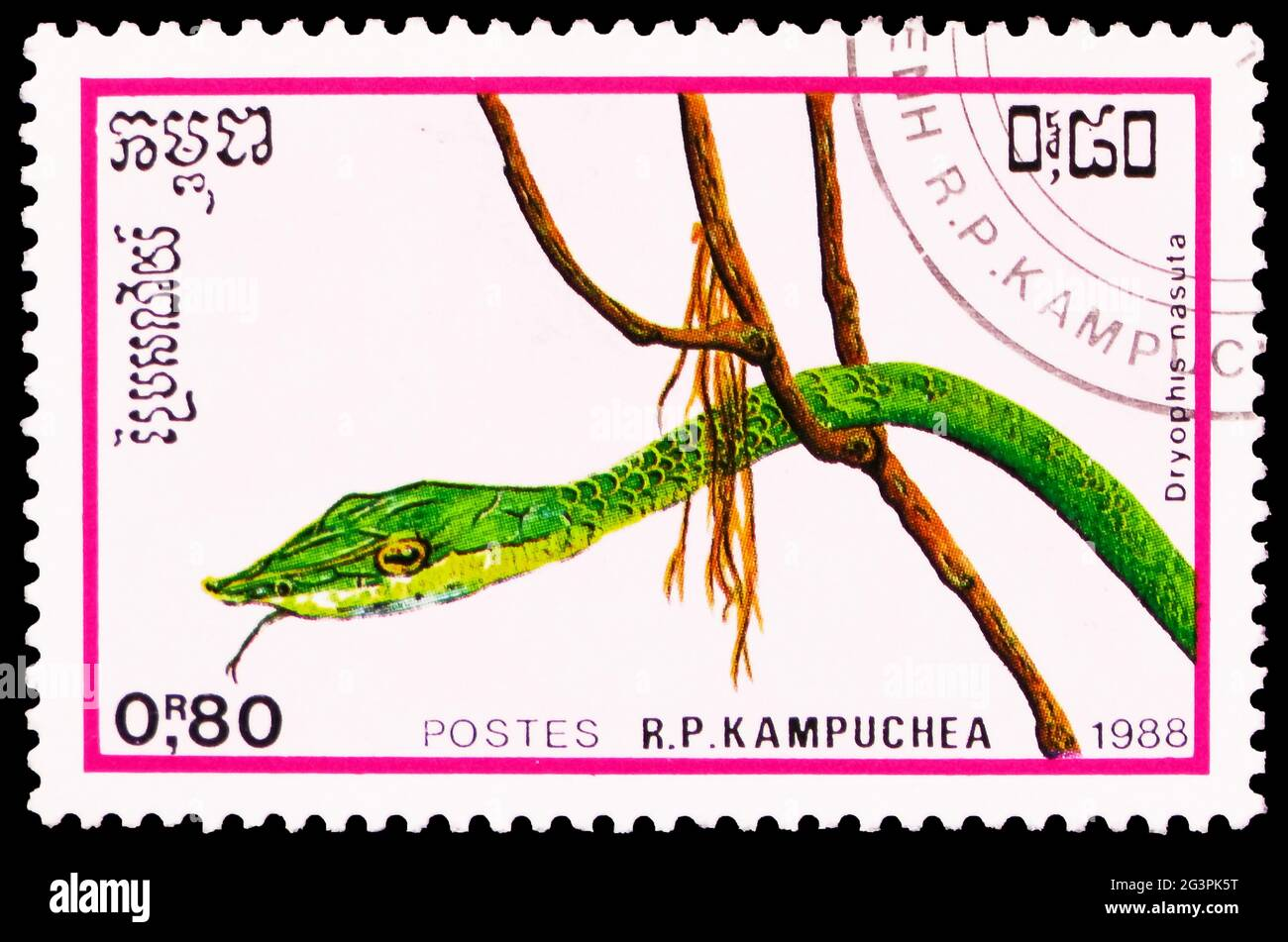 MOSCOW, RUSSIA - MARCH 29, 2020: Postage stamp printed in Kampuchea (Cambodia) shows Asian Vine Snake (Dryophis nasuta), Reptiles serie, circa 1988 Stock Photo