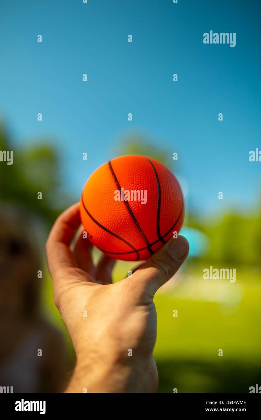 Bright orange mini basketball in a hand Stock Photo