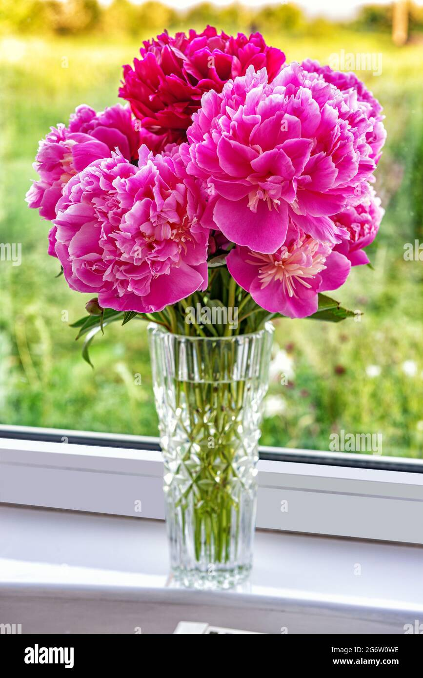 A beautiful bouquet of flowers peonies in a vase are standing on the windowsill Stock Photo