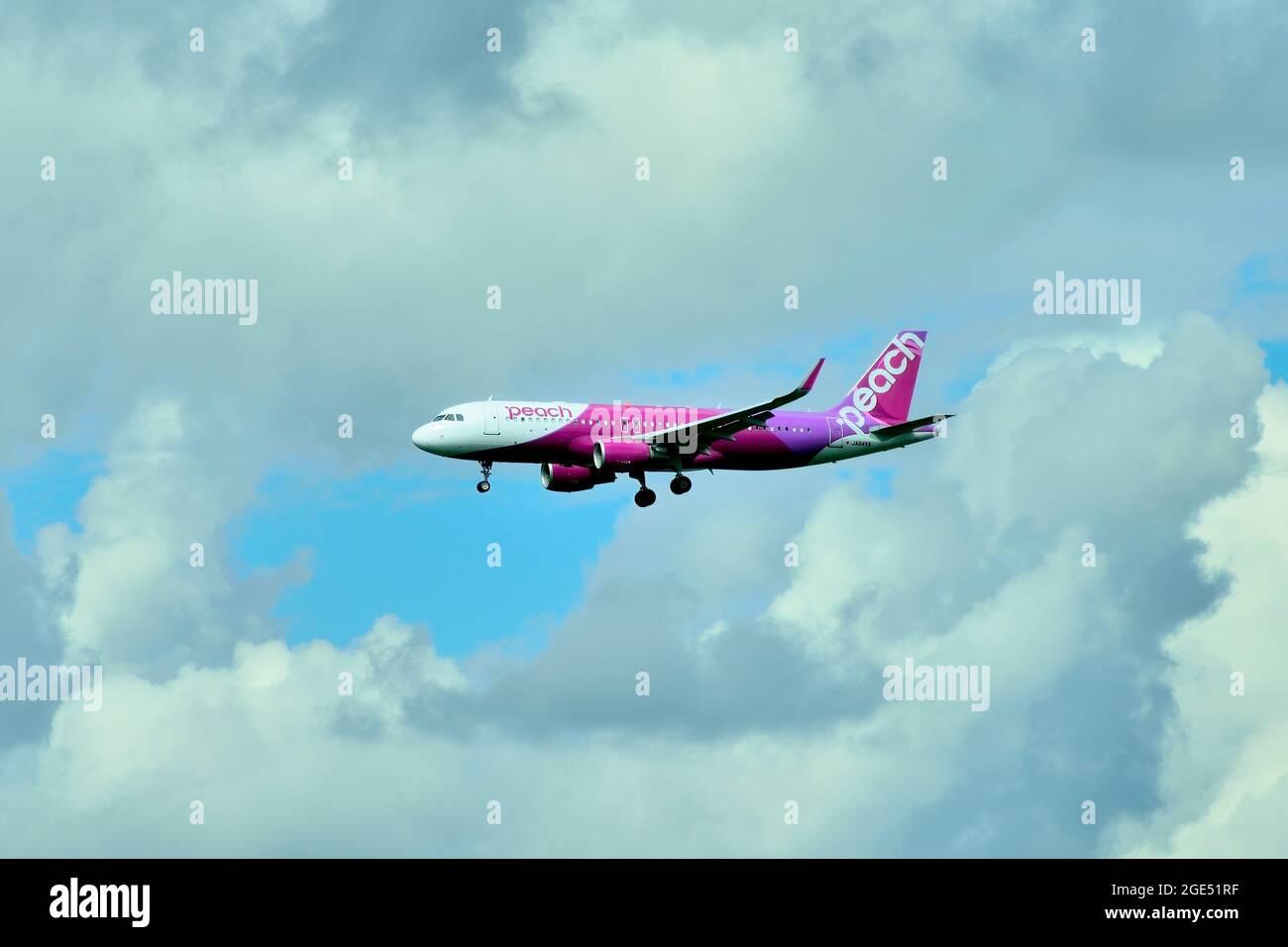 Peach Aviation, Airbus, A320 CEO, WL, JA04VA, Final Approach, Tokyo Narita Airport, Chiba, Japan Stock Photo