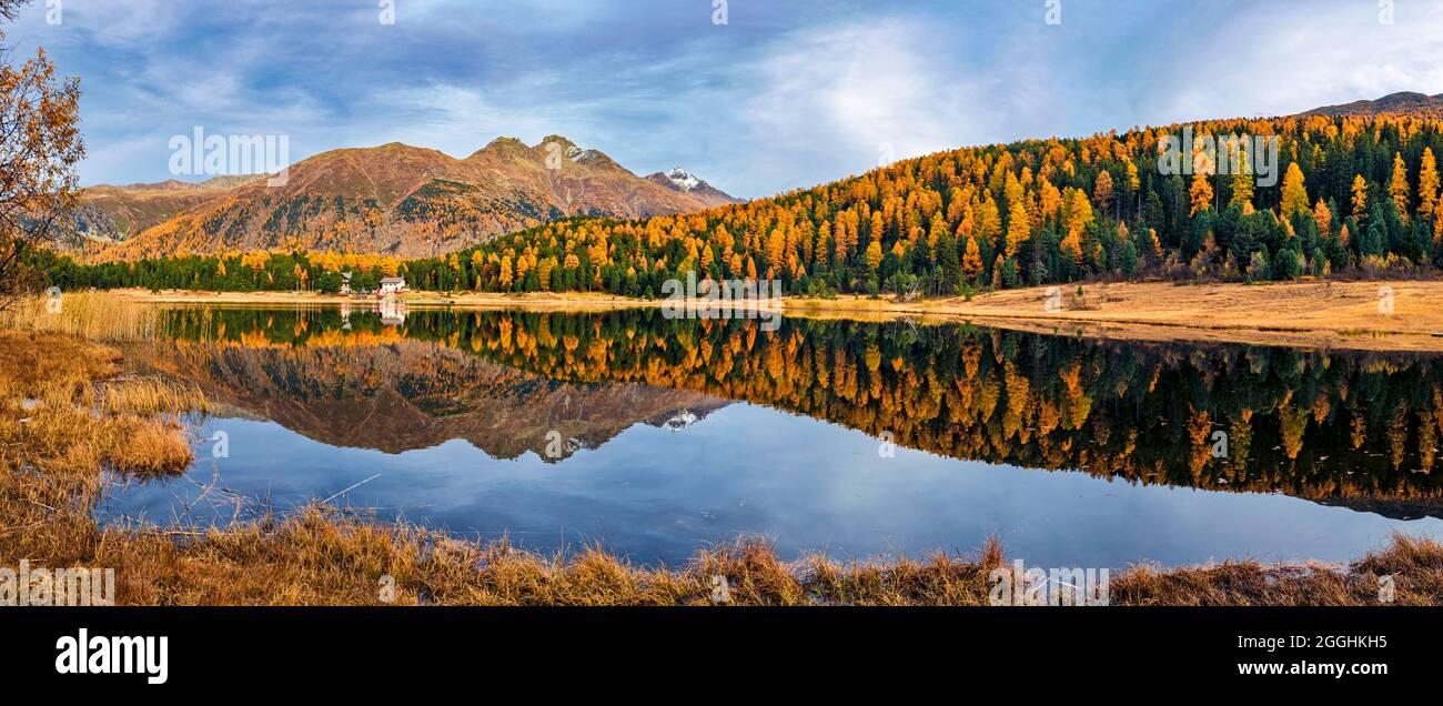 Herbst im Engadin in der Schweiz am Stazersee Stock Photo