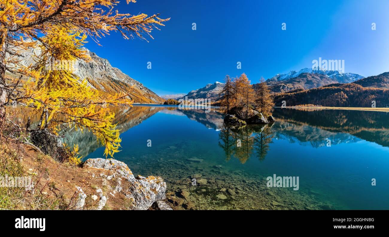 eine kleine Insel mit Bäumen darauf im Silsersee in der Schweit bei Sonnenschein und wolkenlosen Himmel Stock Photo
