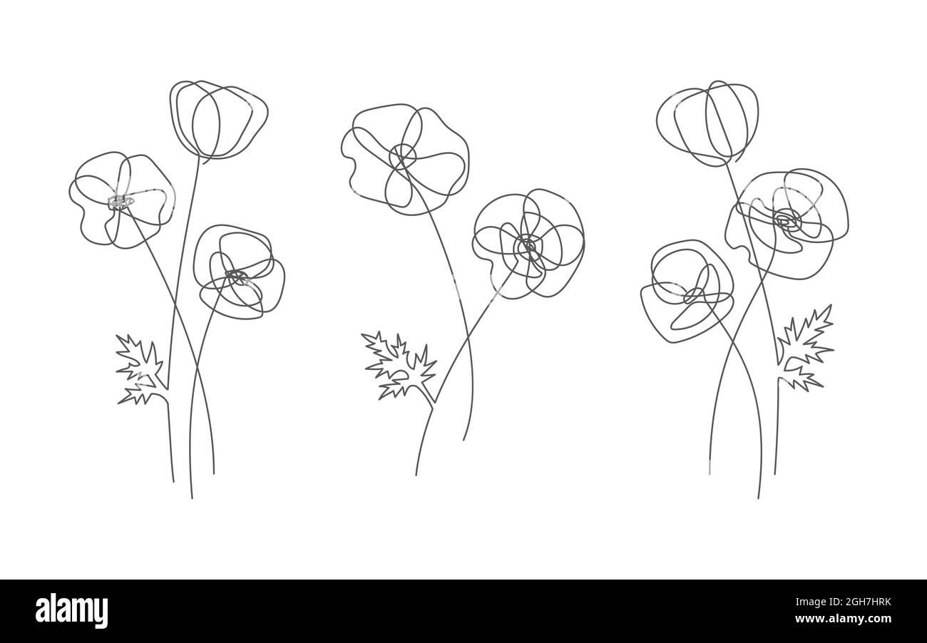 Poppy flower in line style. Modern line art for poster and banner ...