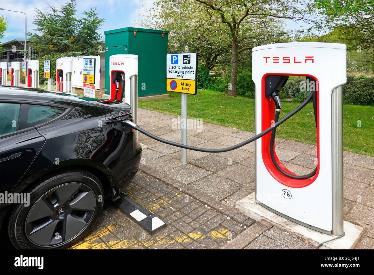 Climate change friendly electric cars charging at row of Tesla car parking bays at Welcome Break facility M42 motorway service station Birmingham UK Stock Photo