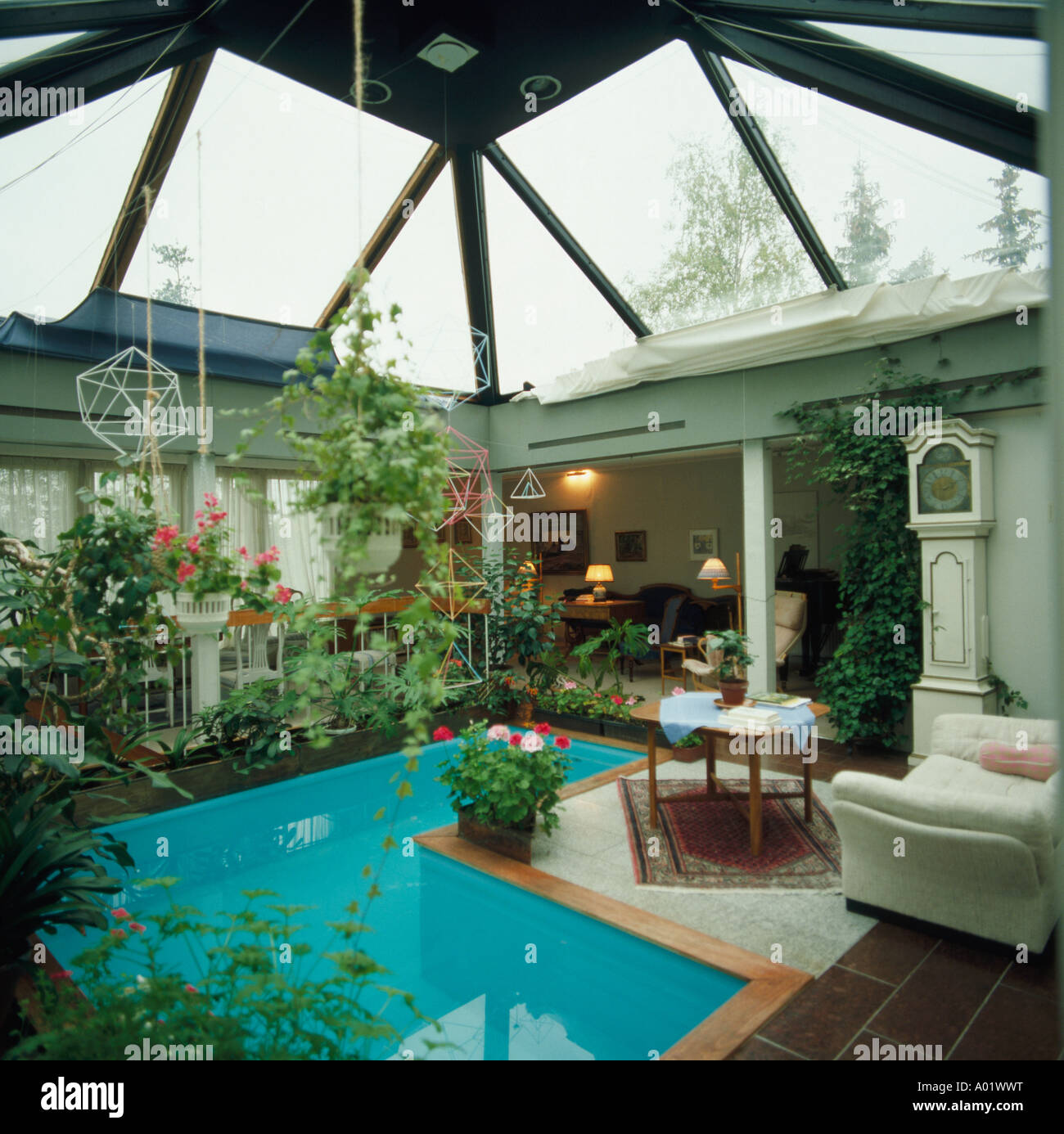Small Blue Angular Indoor Swimming Pool With Profuse Houseplants And Sofa Long Case Clock In Sitting Area Below Glass Roof