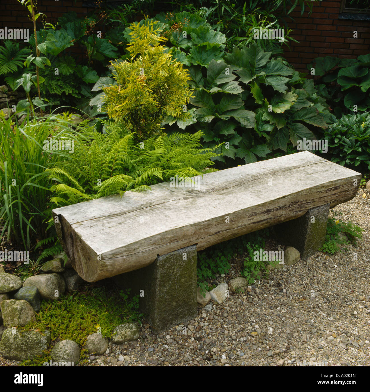 Swell Recycled Wooden Garden Bench In Front Of Ferns And Gunnera Machost Co Dining Chair Design Ideas Machostcouk