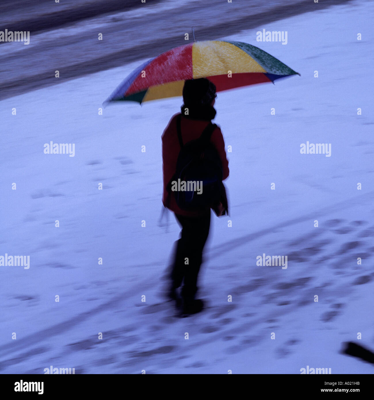 weather, winter, walker with umbrella, winter clothes, clothing, wintry dressed, walking in the snow, stroll, walk, Stock Photo