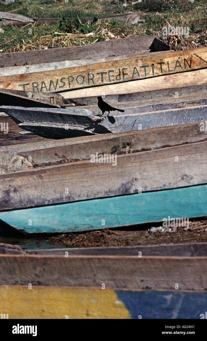 Traditional style wooden canoes moored on the shore of Lake Atitlan Guatemala - Stock Image