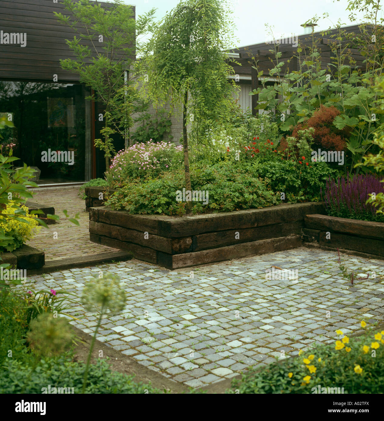 Small Tree And Shrubs In Raised Garden Beds With