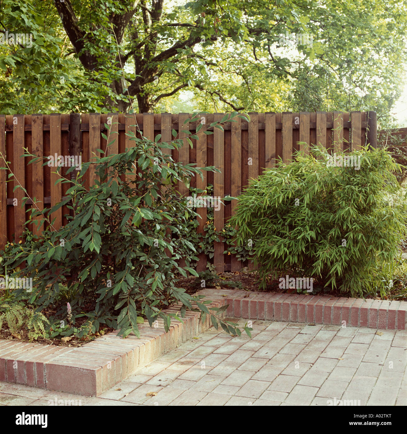 Border Edging Raised Stock Photos & Border Edging Raised Stock ...