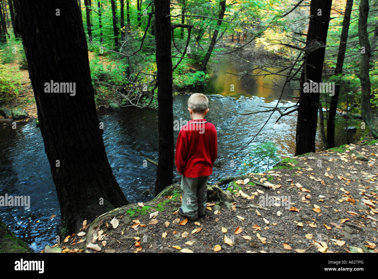 Child exploring along hiking trail with autumn foliage in New England - Stock Image