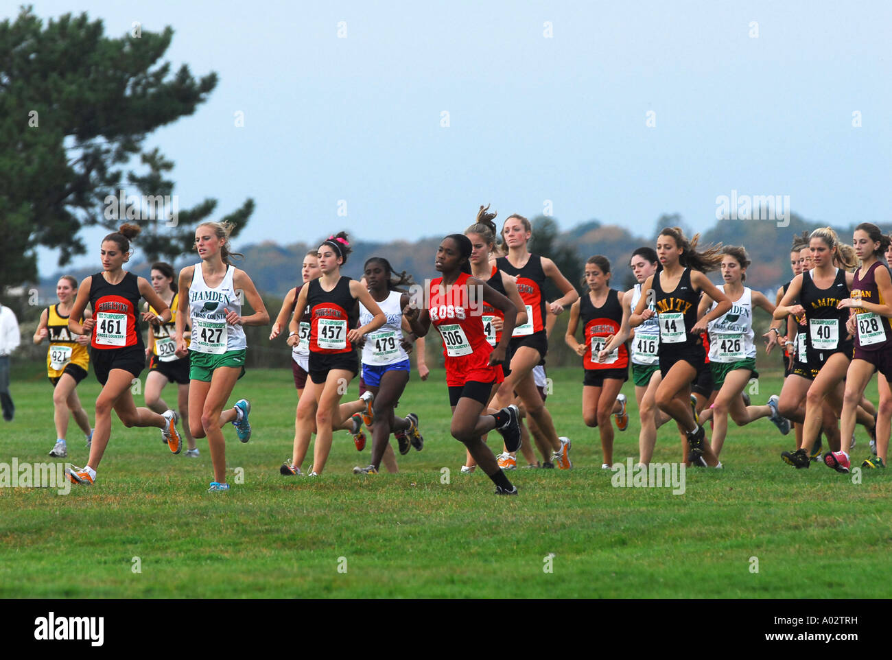A Pack of female Runners at a High School Cross Country Meet - Stock Image