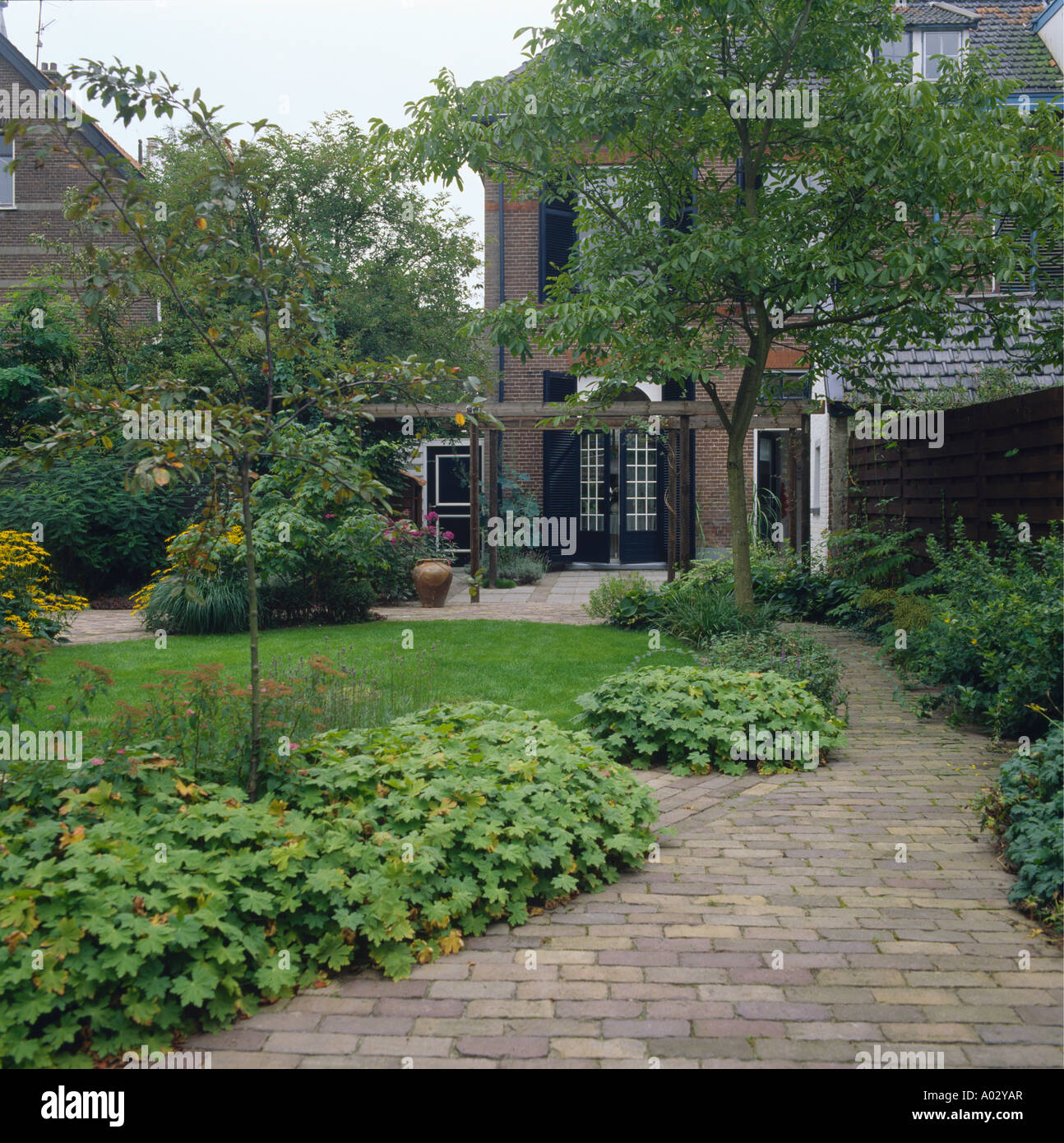 Small Trees For Borders: Paved Path Beside Green Borders With Small Trees Beside