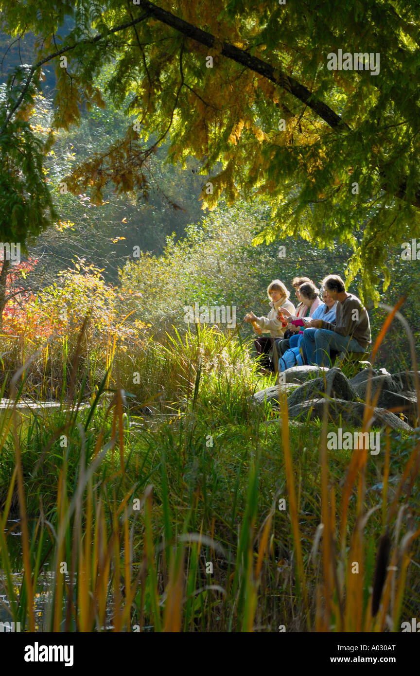 A group of hikers sharing an outdoor breakfast beside a woodland pool, taken against the light Stock Photo