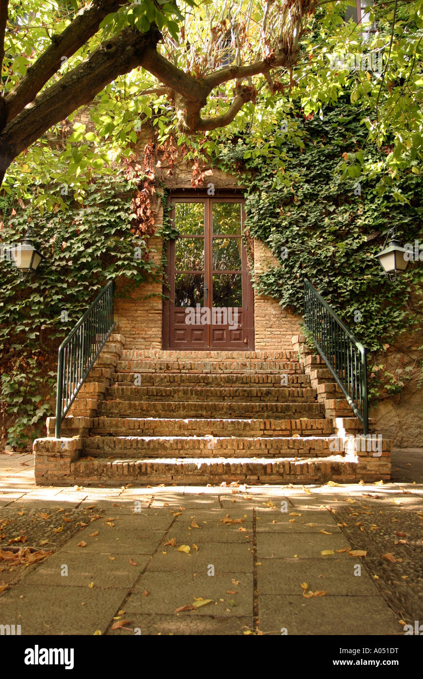 Steps leading up to a door covered with ivy and trees, a secret ...