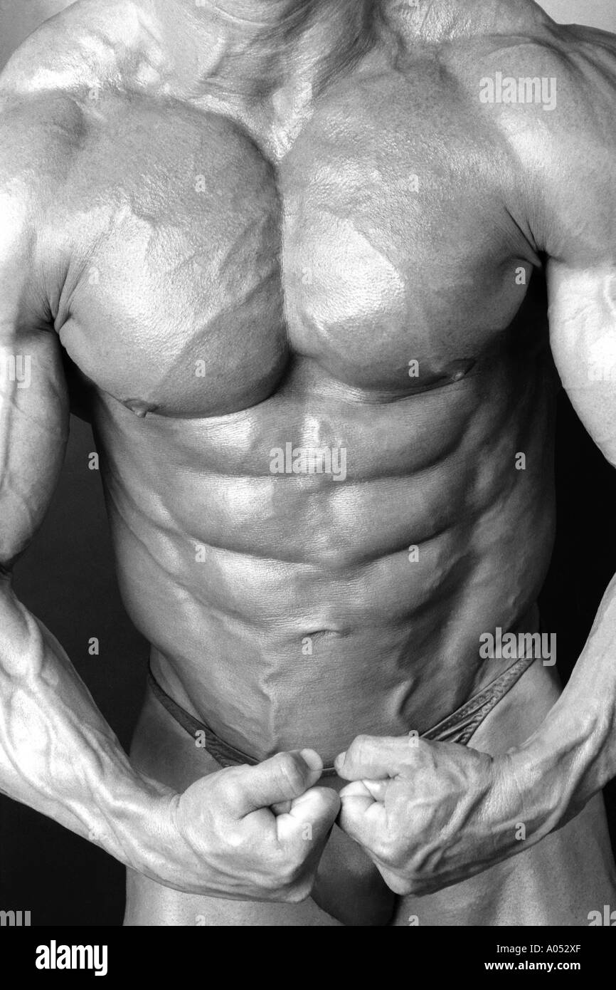 6 Pack Stomach Ab Muscles And Buldging Pectoral Muscles Of Muscular
