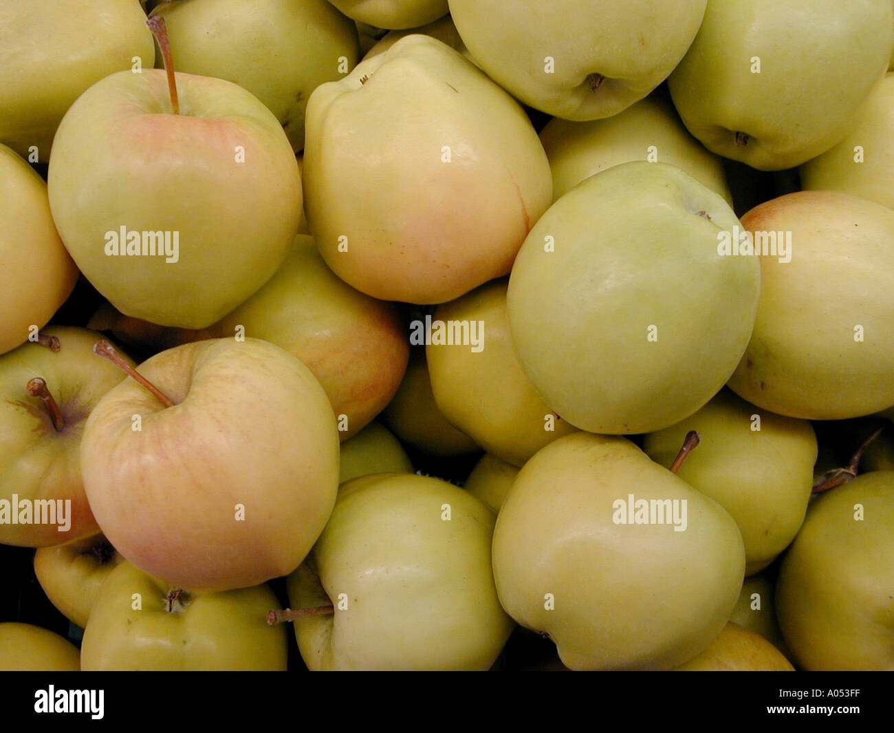 Golden Deliciou at a fruit stand in eastern Washington State USA Stock Photo
