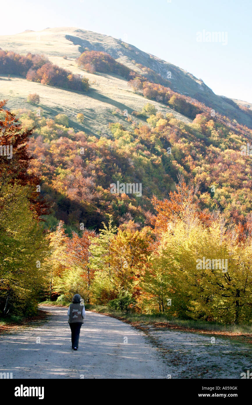 Woman tourist walking along a road admiring the wonderful fall colors of the Sibillini Mountains ,Le Marche,Italy - Stock Image