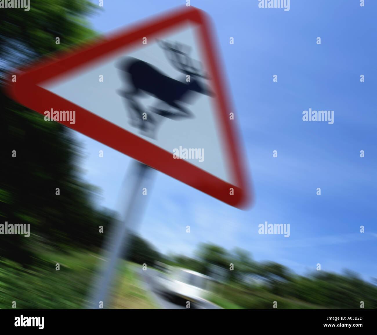 Roadside deer warning - Stock Image