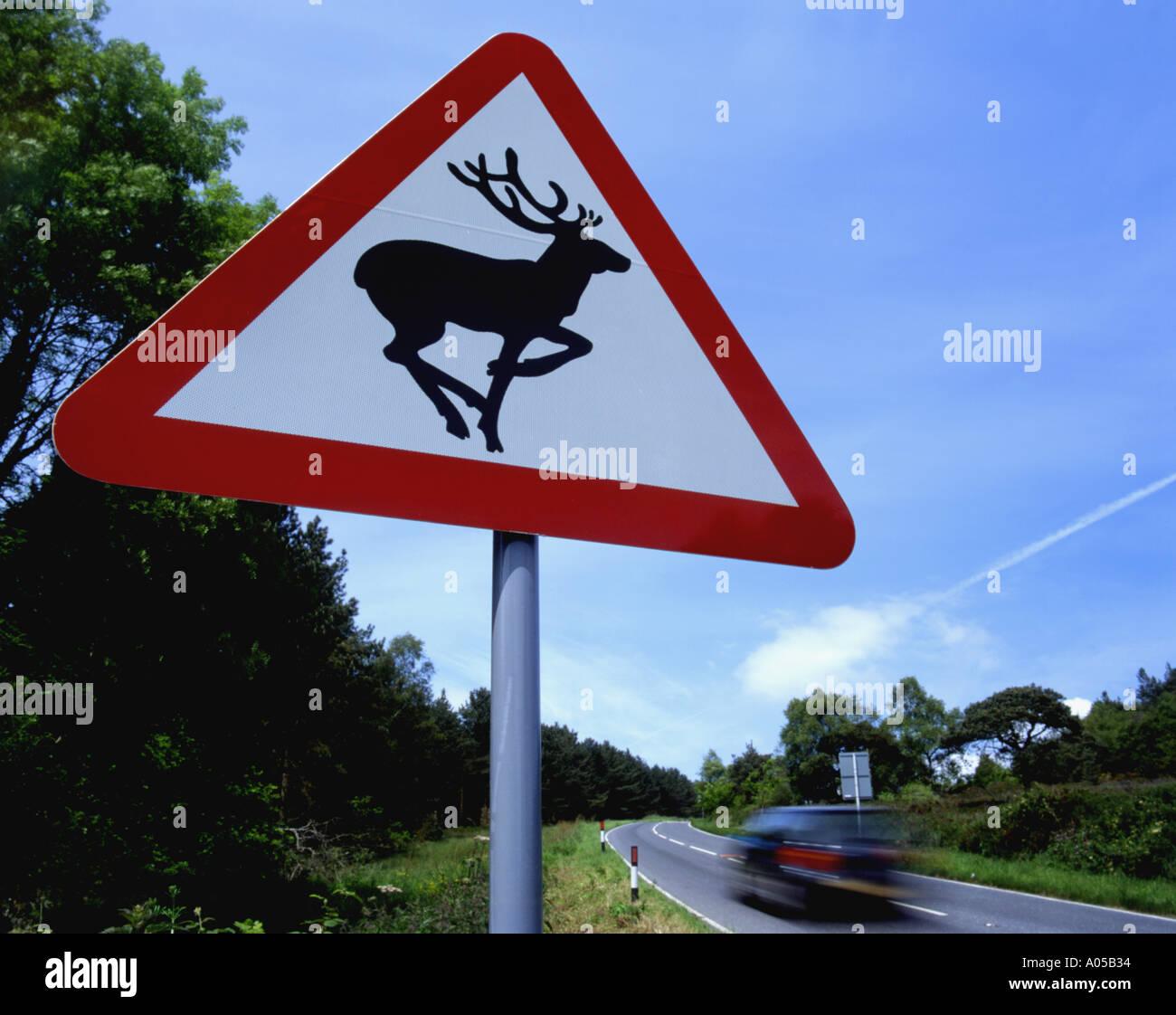 A roadside deer warning, near Teignmouth, Devon, England, Great Britain. - Stock Image