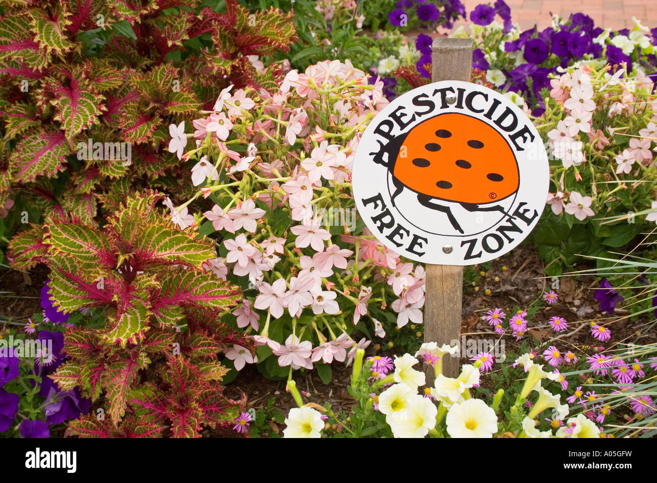 Pesticide free zone sign in flower bed USA Stock Photo: 9887100 - Alamy