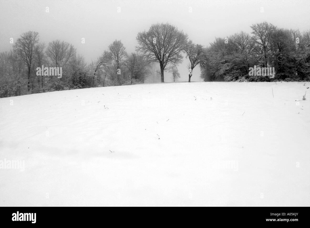 winter - Stock Image
