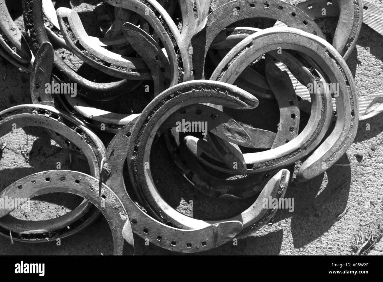 black and white of horseshoes - Stock Image