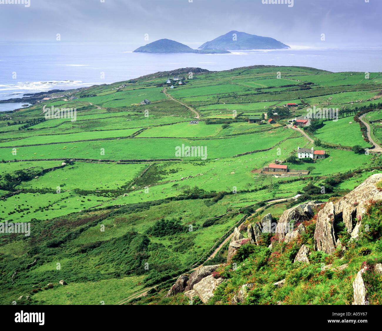 IE - CO. KERRY:  Derrynane Bay showing Deenish Scariff Islands along the Ring of Kerry Stock Photo
