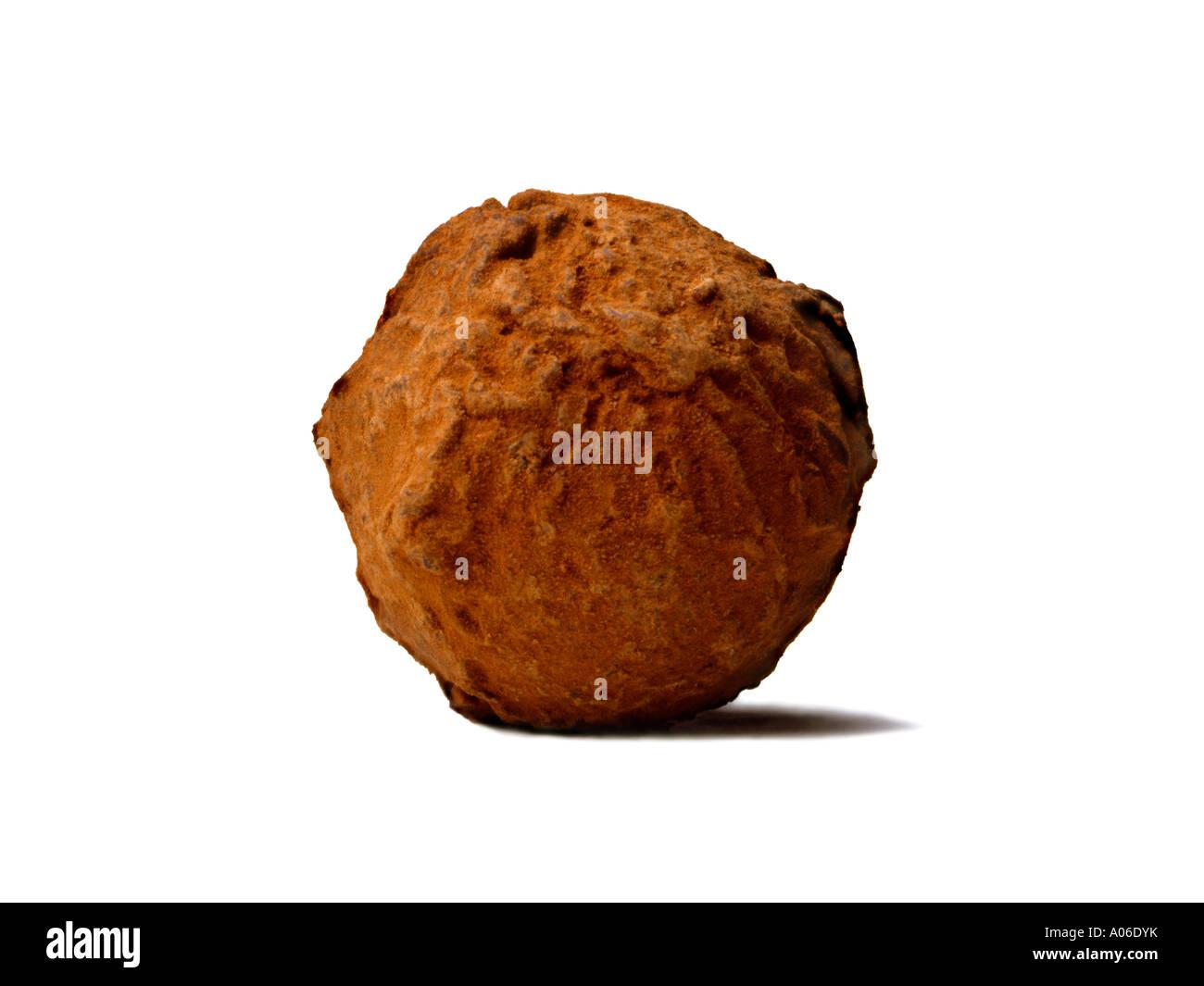 DUSTED CHOCOLATE TRUFFLE - Stock Image
