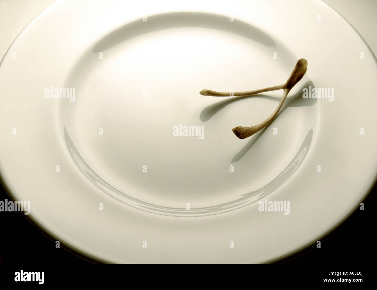 WISHBONE ON A WHITE PLATE - Stock Image