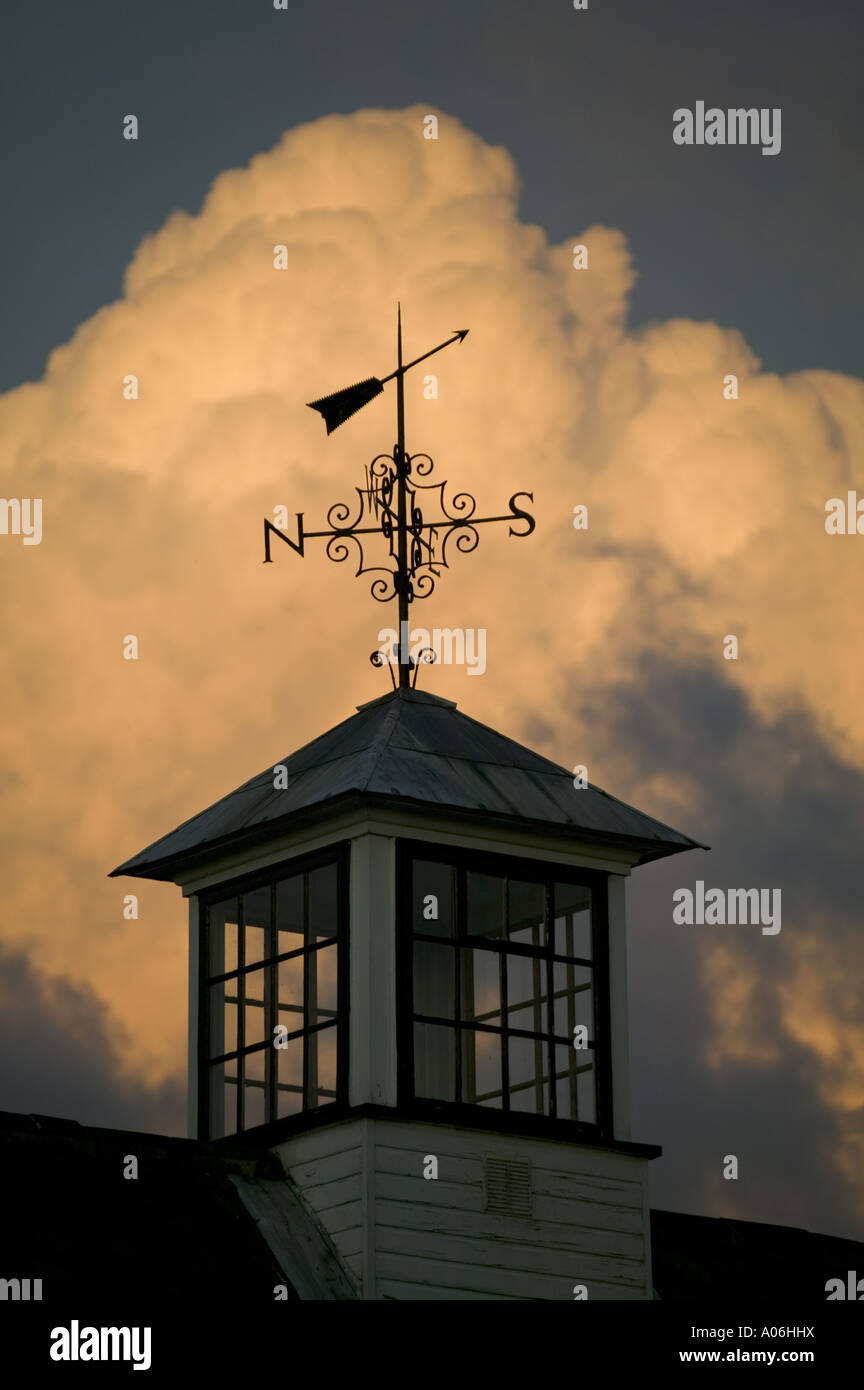 Detail of a weather vane on the Mill at Hambleden Lock - Stock Image