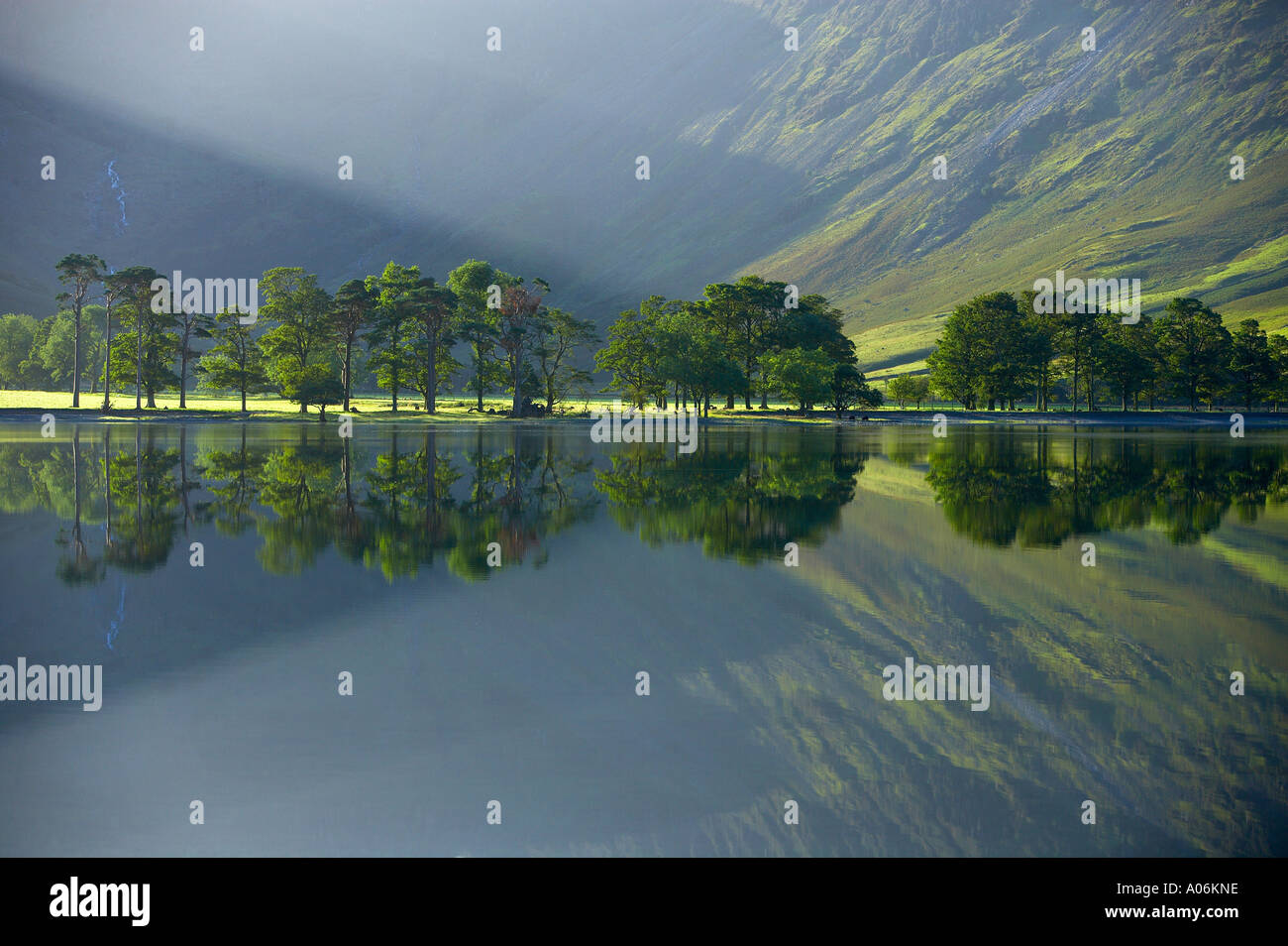 reflections on the shore of Buttermere at dawn Cumbria Lakes District Cumbria England UK - Stock Image