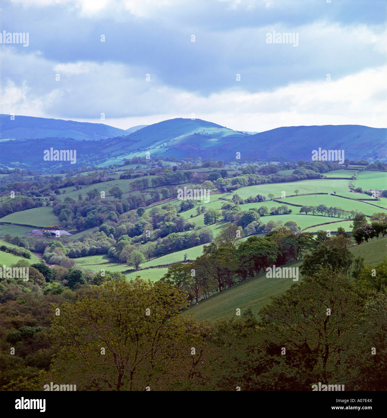 Welsh hills in Carmarthenshire countryside near Llandovery and Llanwrda  in late summer Mid Wales UK  KATHY DEWITT - Stock Image