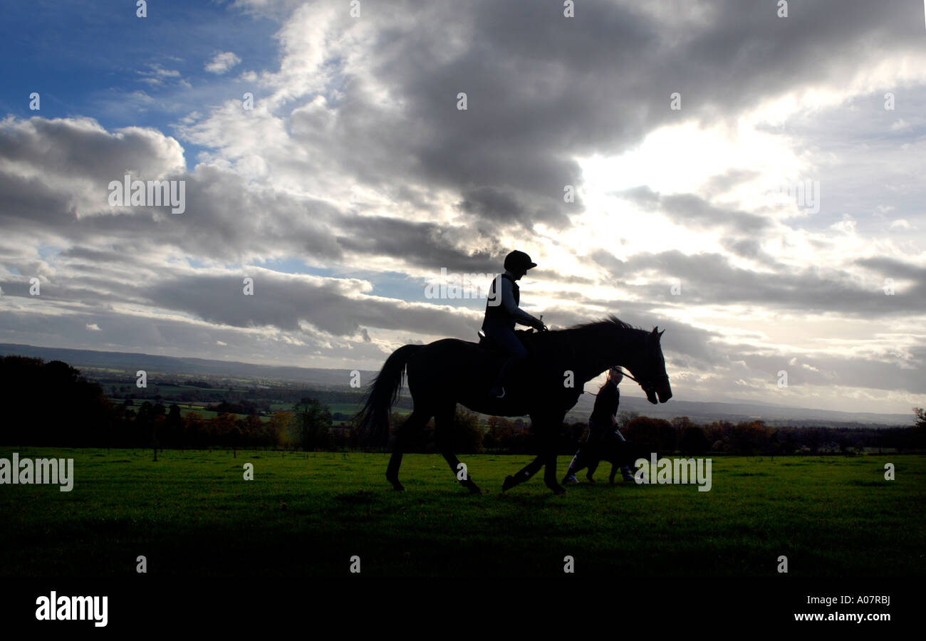 Horse and rider across land near Croft Castle Herefordshire - Stock Image