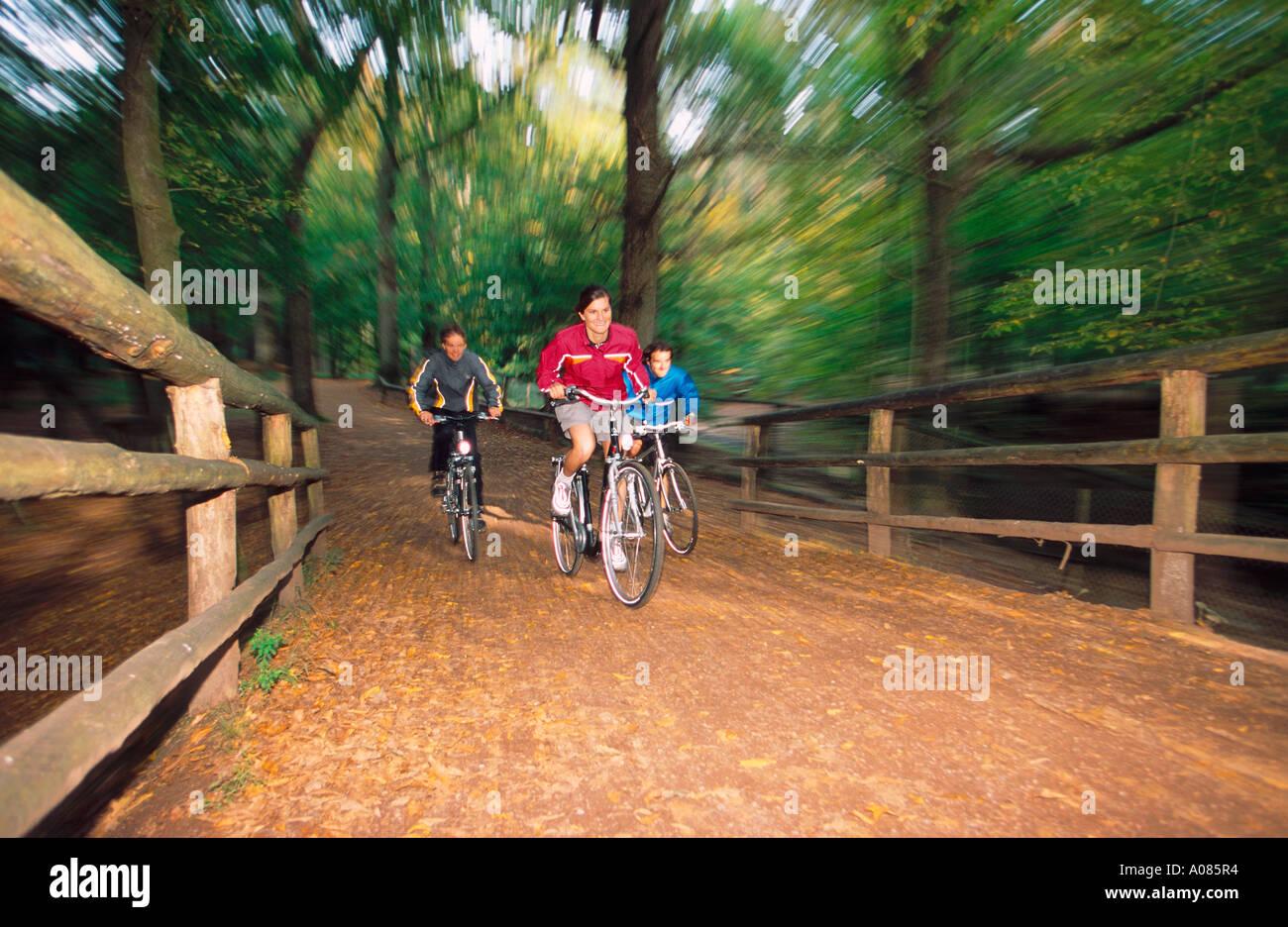 Trekkingbikers in Forest Koeln DEU GERMANY Stock Photo